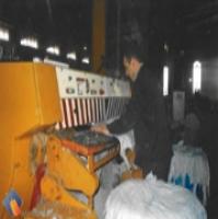 فروش  تولید سالامبور گوسفندی