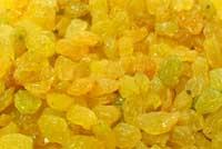 فروش  Golden Raisin