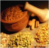 فروش  انواع گیاهان داروی و زعفران.