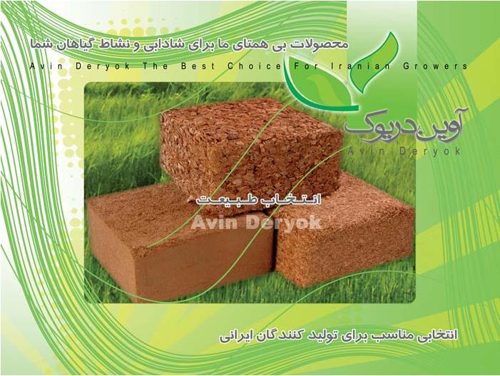 Buy Soil for houseplants