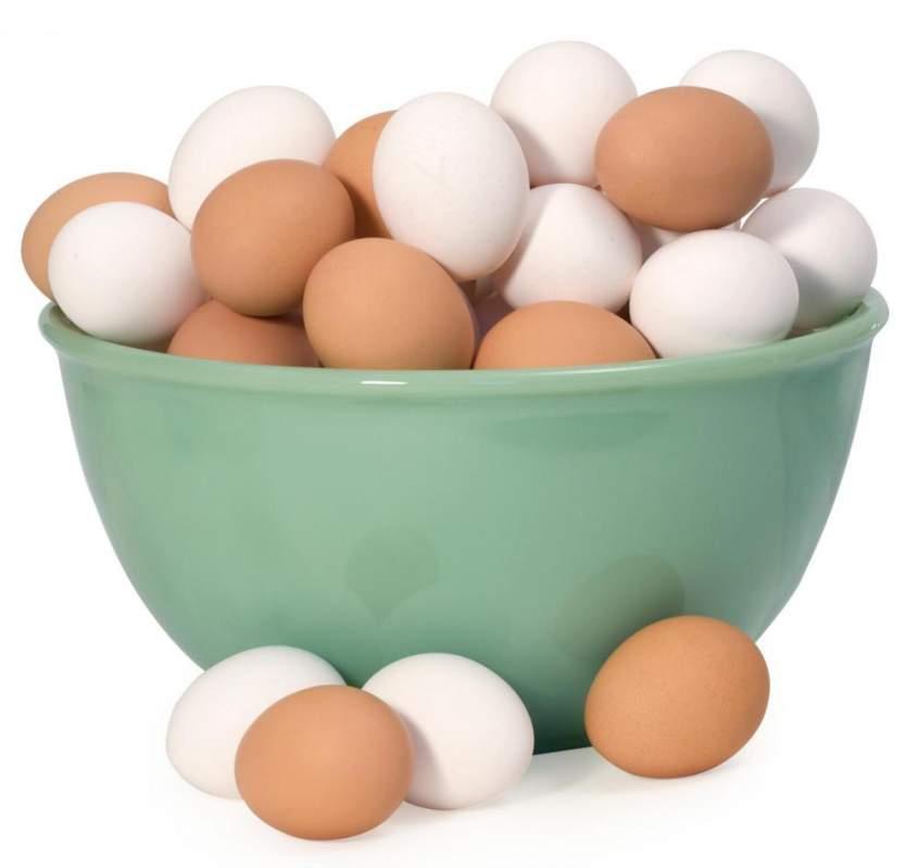 فروش  تخم مرغ تازه