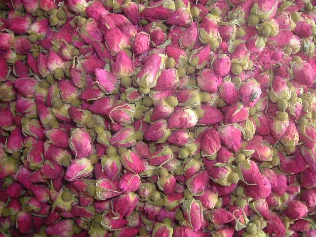 خرید کن جوانه خشک شده گل رز ، برگ خشک شده گل رز