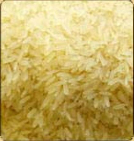 فروش  برنج تایلندی