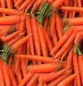 فروش  هویج