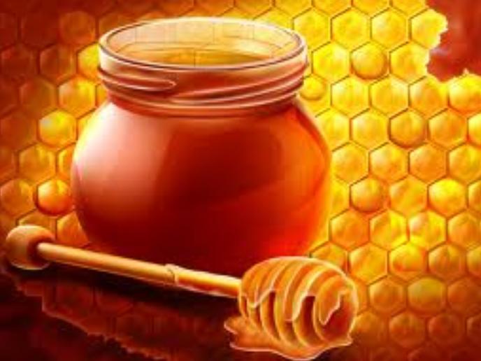 فروش  Honey