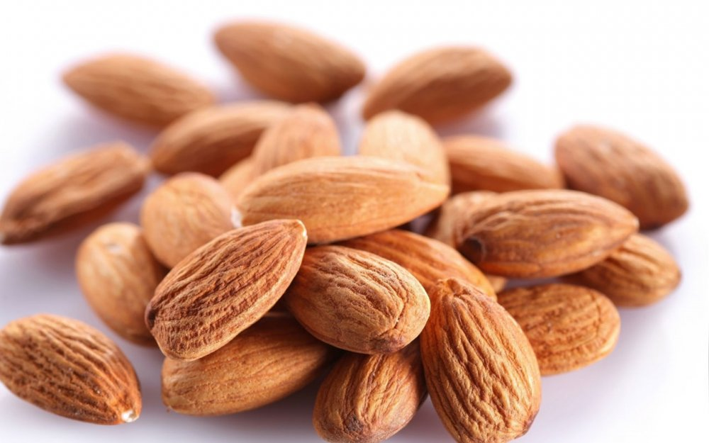 فروش  Iranian Kernels and Nuts
