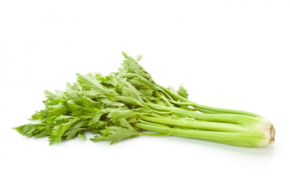 خرید کن Fresh Celery