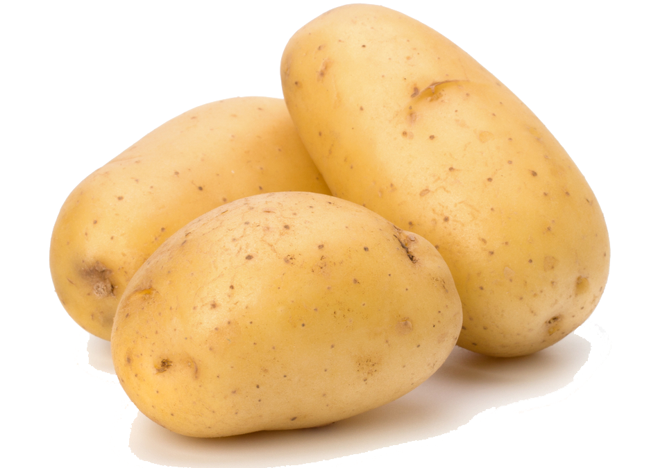فروش  Potatoe