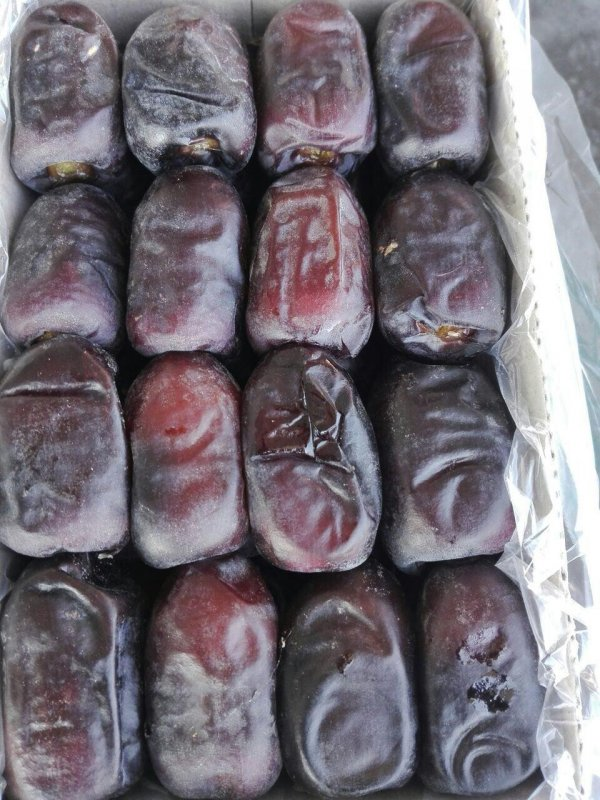 FRESH MAZAFATI DATES