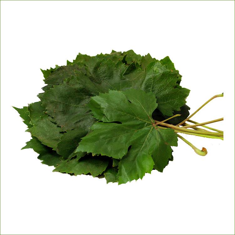 خرید کن Grape leaves