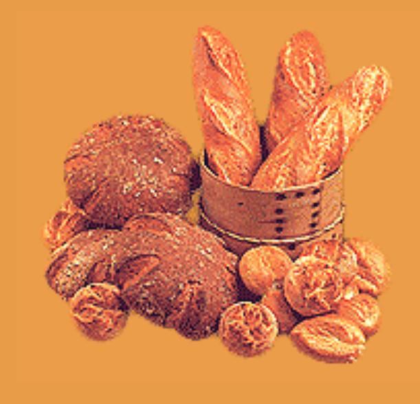 فروش  سحر - ٠١ ( بهبود دهنده انواع نانهاي حجيم )