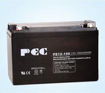 خرید کن Battery PE12-100