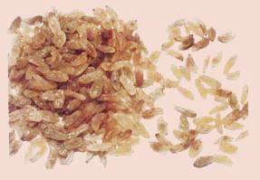 فروش  Golden Raisin A