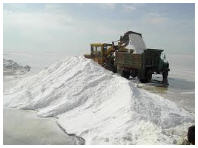 Salt for roads strewing