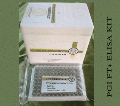 Human Free Thyroxine (fT4) ELISA Kit