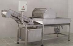 LW-44 دستگاه شستشوی سبزیجات برگی