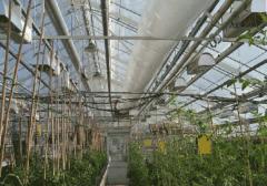 Equipment for terrarium