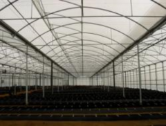 Greenhouses, wooden frame, prefabricated