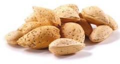 بادام  بادام سنگ