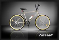 دوچرخه کوهستانی دماوند ٢٦ اینچ یک سرعته
