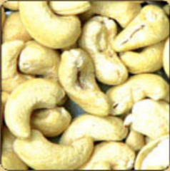 Cashew paste