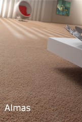 Needle punched carpet covering