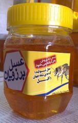 عسل 500 گرمی برزویان 100% طبیعی و تنها عسل با ضمانت در بازار