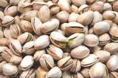 Iranian pistachio ,Fandoghi pistachio,Akbari