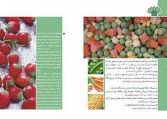 میوه و سبزیجات منجمد