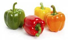 Fresh CAPSICUM ( sweet bell pepper )