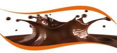 پایدارکننده شیر کاکائو (GuMax CM)