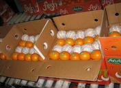 میوه و مواد غذایی