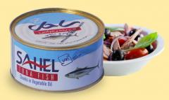 كنسرو ماهی تن در روغن معمولی با درب ساده