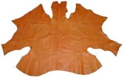 Leather of ostrich