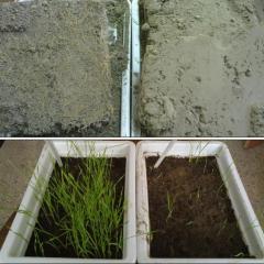 اصلاح کننده خاک و محرک رشد گیاه - ZYTONIC