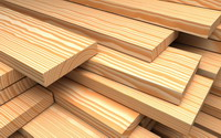 چوب های جنگلی