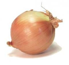 پیاز زرد،Yellow Onion