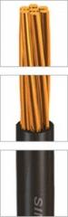 کابل تک هسته، عایق  PVC  ، سفت و سخت هادی