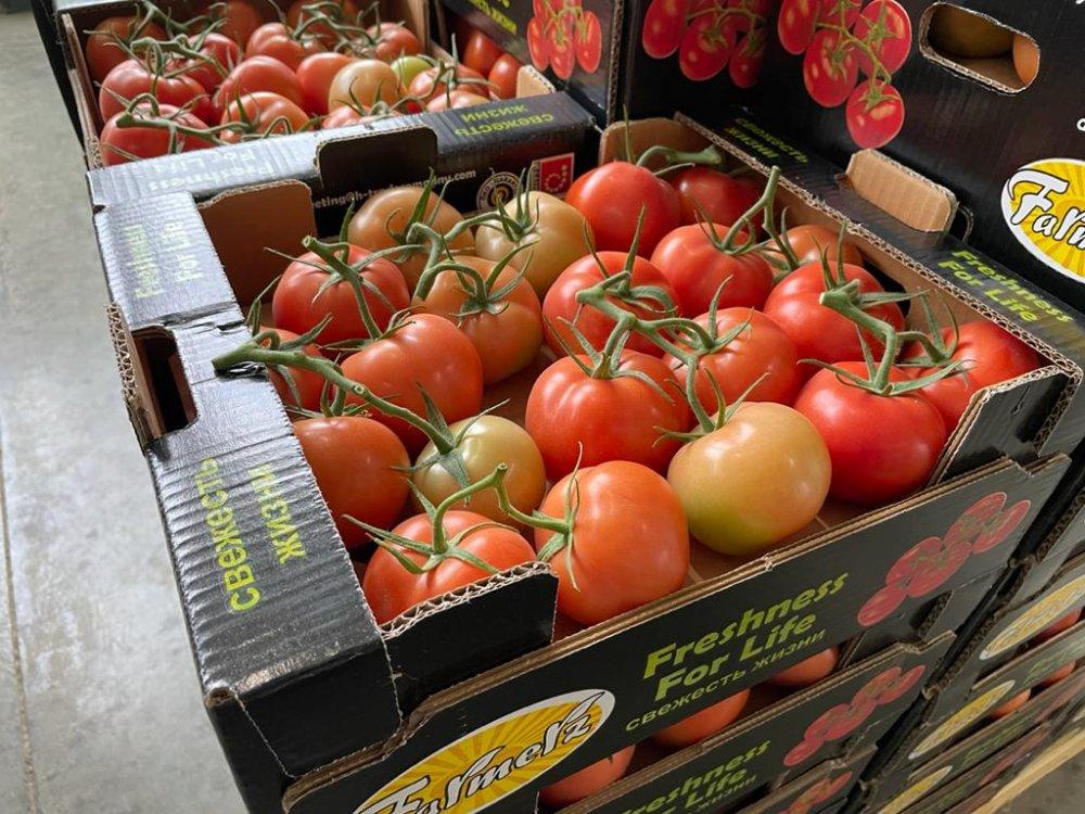 tomato_cluster_greenhouse_tomato