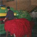 تولید دایکراست گوسفندی