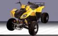 ATV 110 150 250