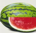 میوه جالیزی