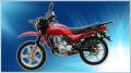 موتور سیکلت همتاز شکاری اس .اچ ۱۵۰