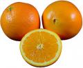 پرتقال