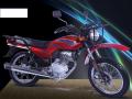 موتور سیکلت  دلتا AGL 160 شکاری
