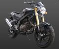 موتورسیکلت چهار زمانه دو  سیلندر۲۲۰  سی سی