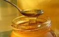 عسل طبیعی سدر جنسی کوه بوشهر ممتاز