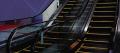 Screw elevators, lifts, for piece cargo