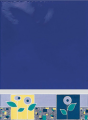 حاشيه دياموند الناز آبی
