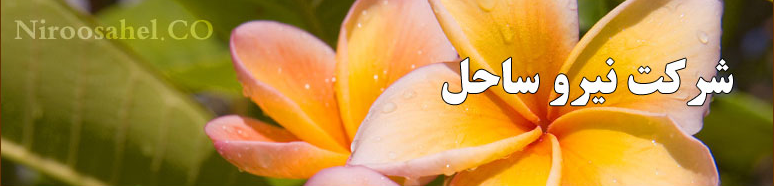 شرکت نیروساحل بوشهر, بوشهر